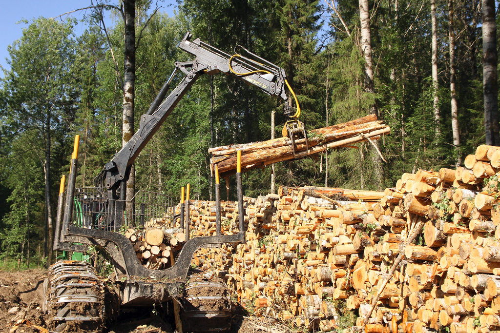 Ведущая сфера экономики района— лесозаготовка илесопереработка