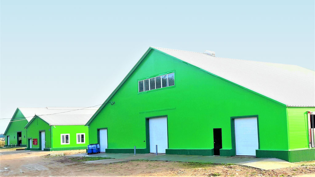 Ферма «Боровинка». Новый двор для беспривязного содержания скота