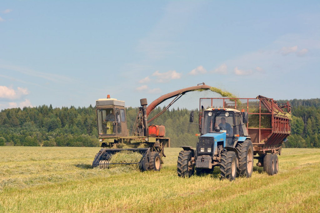 СПК «Никольск»— это лидер Вилегодского района понадоям молока, перспективное, развивающееся хозяйство свысокопрофессиональным коллективом