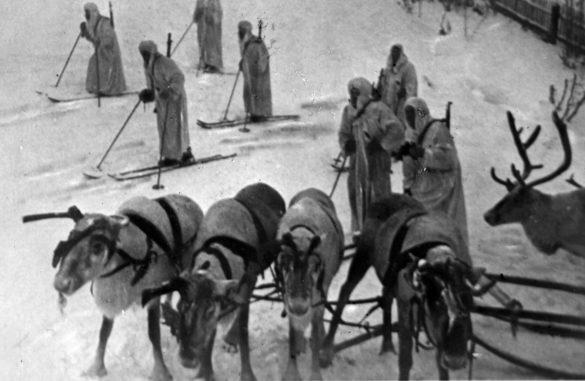 Далеко не все знают, что в 1941–1942 годах из нашего округа на Карельский фронт были отправлены шесть сотен призывников и тысячные стада оленей