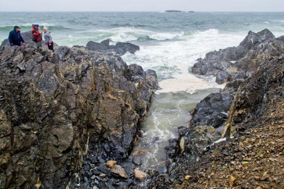 В 2001 году на острове Вайгач был создан заказник регионального значения. Но этого, по мнению экологов, недостаточно
