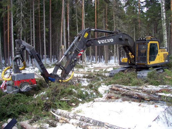 Заготовка древесины харвестером Volvo