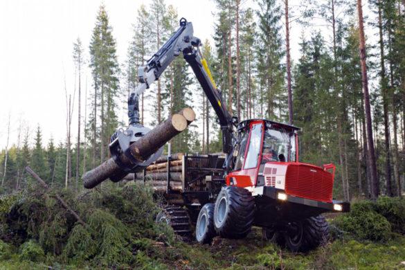 Лесозаготовка —основа экономики в районах Поморья