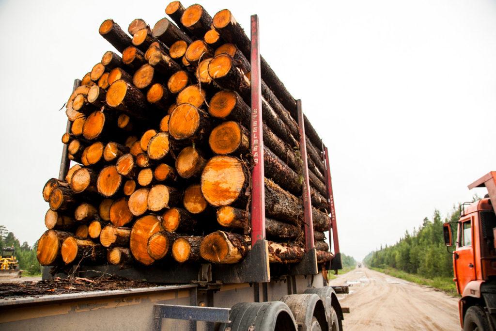Лесовозы в пути