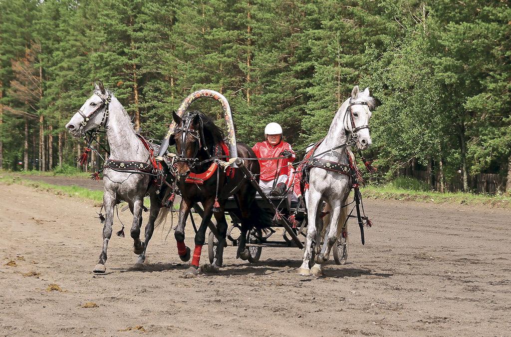 Вельский ход конем