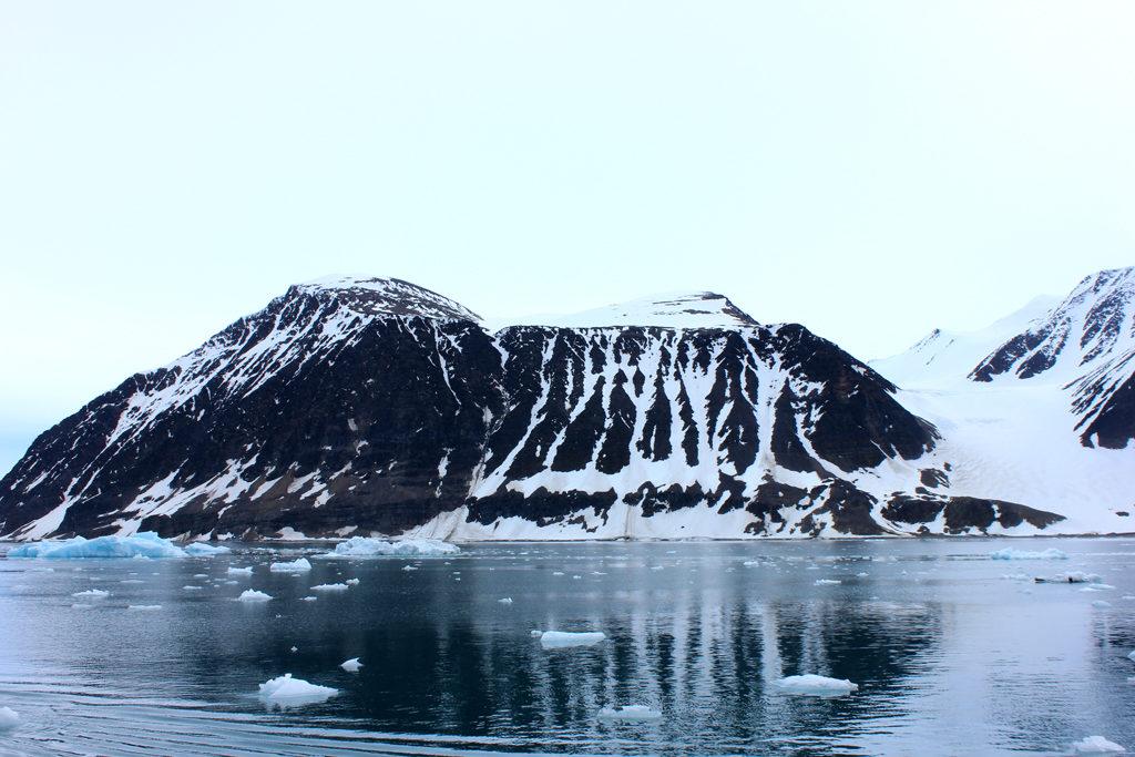 Ученые наблюдали заизменениями вэкосистемах прибрежных территорий арктических архипелагов