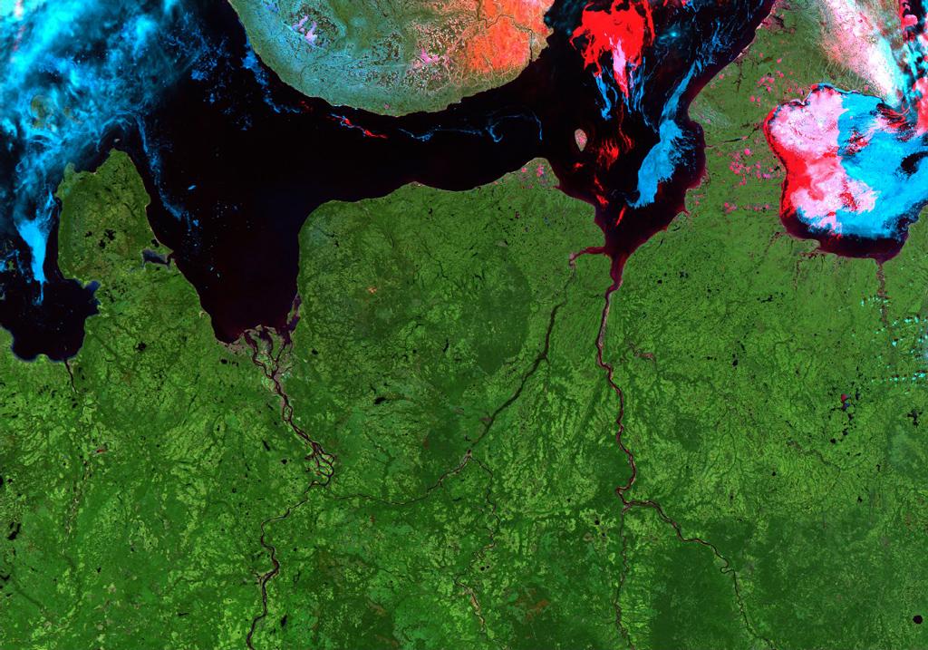 Снимок со спутника Modis севера Архангельской области, каналы подобраны так, чтобы была ярко видна растительность
