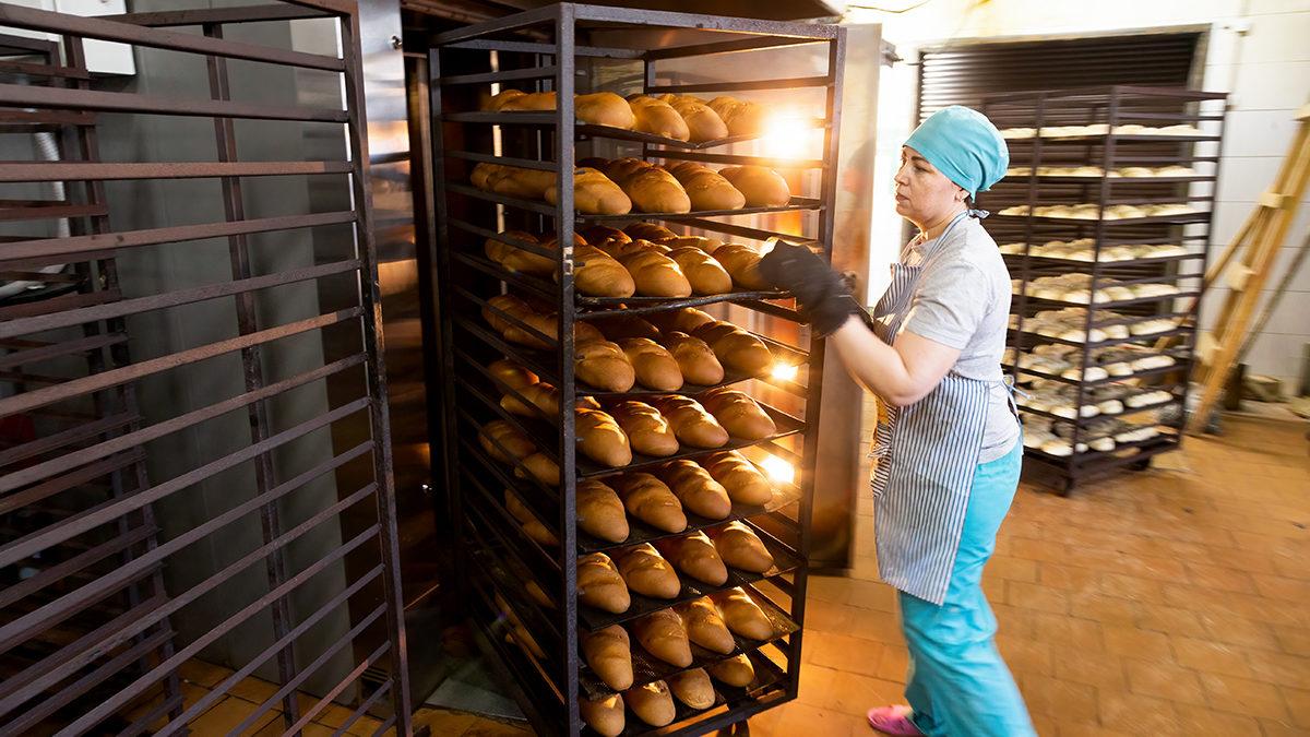 «Вилегодский хлеб»: вкус родины